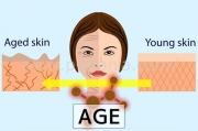 老化の原因になるタンパク質とは?