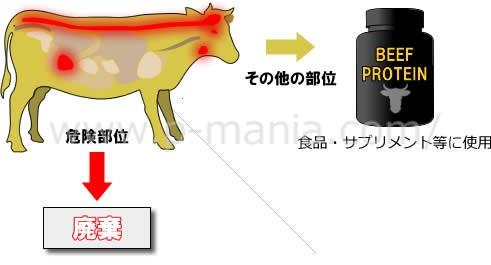 牛肉とプロテイン