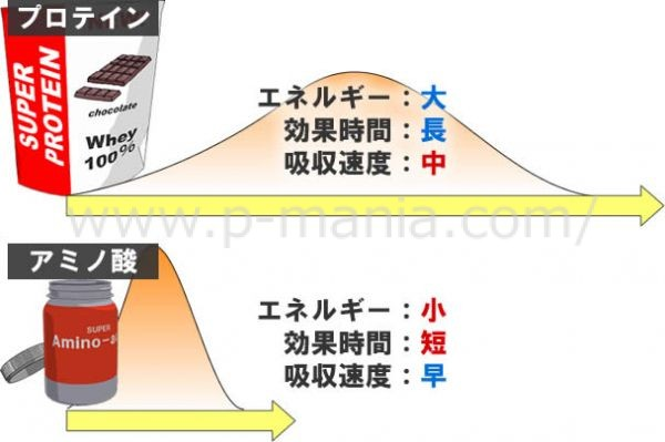 プロテインとアミノ酸の違い